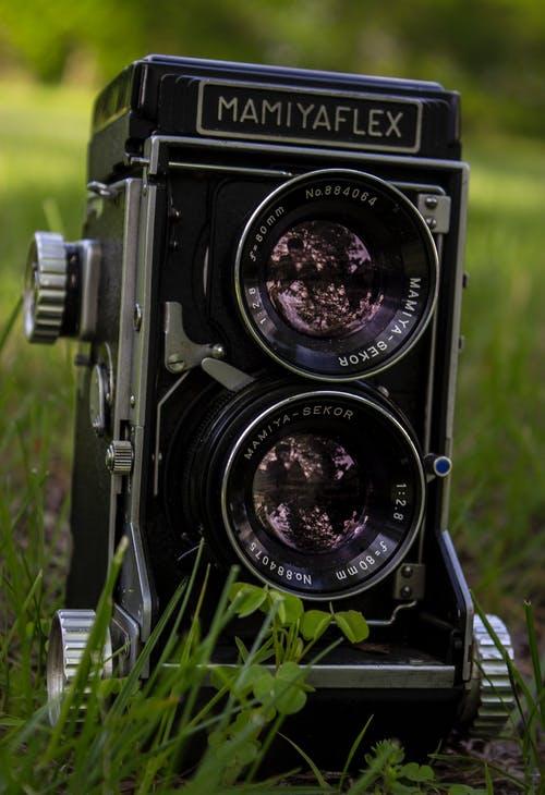 pexels-photo-1121975
